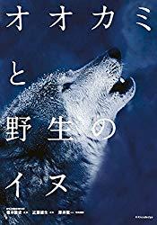 ネコとライオン、イヌとオオカミ!似た生き物をまとめた写真集本のオススメ